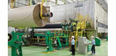 全球最大造纸厂为何落户印度