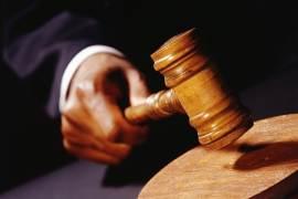 佳能获德法院颁布的预先禁令