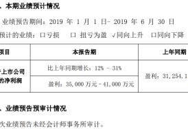 纳思达2019年半年年度业绩预告