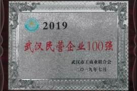 鼎龙上榜2019武汉民营企业100强、民营制造业企业50强