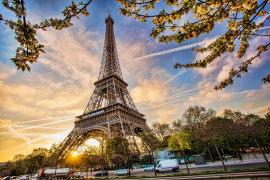 2020再生时代欧洲展前瞻丨原来你是这样的法国大买家