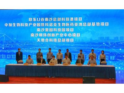 """签约动工13个项目协议总投资342.5亿元!广州南沙""""换挡提速""""加快开发建设"""