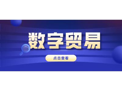 """围绕""""数字"""",浙江自贸区杭州片区打算这样建!"""