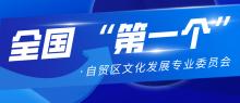 全国首个自贸区公共文化发展专业委员会在京成立